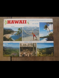 MAXI CARD POST /MAXI  CARTE POSTALE / HAWAII /  NU NUI 48